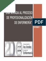 Una Mirada Al Proceso de Profesionalizacion de Enf