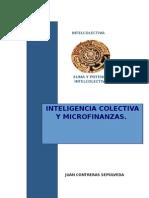Aplicando Inteligencia Colectiva en Las Microfinanzas