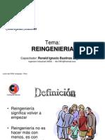 tema-expo-reingeneria_pi.ppt