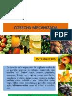 COSECHA MECANIZADA[1]