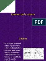 Ex a Mendel a Cabeza