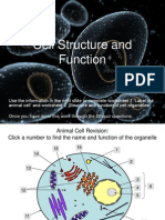 Animal Cell Structure and Function Teacher