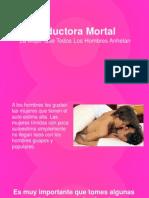 Seductora Mortal - La Mujer Que Todos Los Hombres Anhelan