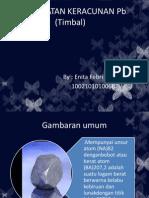 pengobatan keracunan timbal (pb)