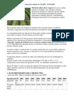 Sfecla de Zahar Material extragere zahar import export istorie canada cuba trestie de zahar comparatie continut in zahar 15-16 %