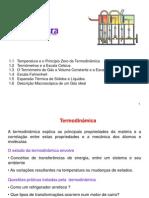 Termodinâmica1