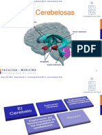 pruebascerebelosas-100709100637-phpapp02