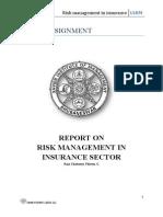 risk managemen tininsurance sector