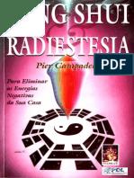 99215383 Feng Shui Radiestesia