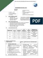 Programación-Unidad.1er año-FCC-2013 (1)