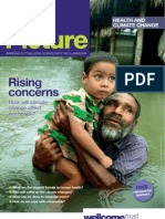 Big Picture on Health and Climate Change