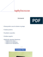 Staphylococcus (Staphylococcus aureus, Staphylococcus epidermidis, and Staphylococcus saprophyticus)