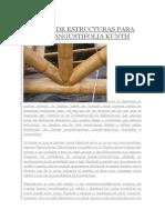 Uniones de Estructuras Para Guadua Angustifolia Kunth