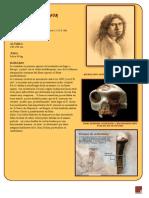 hominidos 2