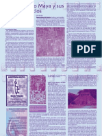maya.pdf.pdf