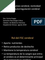 clases cti 2010 Flujo sanguíneo cerebral, rectividad cerebral, autorregulación