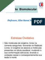 Aula Nutricao Biomolecular