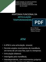 ATM3(1)