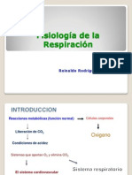 3 Fisiologia Respiratoria
