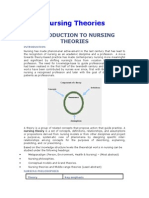 9693090 Nursing Theories