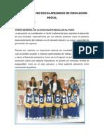 PROGRAMAS NO ESCOLARIZADOS DE EDUCACIÓN INICIA1 3