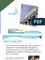 presentacion_taes[1]