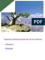 Artic y músculos, aspectos grales, III año 02 06 09