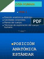 Tema 1. Posición anatómica, cavidades corporales y técnicas de exploación presentación.ppt
