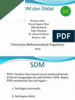SDM Dan Diklat