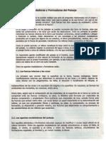 Agentes Model Adores y Form Adores Del Paisaje