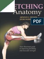stretching anatomy