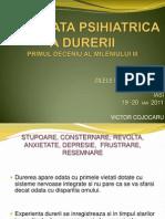 Cojocaru ZM 2011 Interfata Durerii