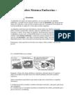 Questões sobre Sistema Endocrino