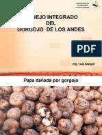 MIP Gorgojo (L Crespo) c Fondo
