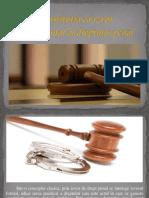 Constituţia ca izvor fundamental al dreptului penal