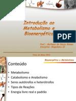 Aula 1.Metabolismo e princípios de bioenergética