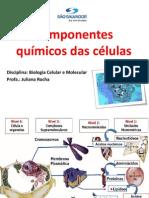 AULA - componentes qu+¡micos  da c+®lula -