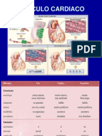 Clase Cardiofisiologia.ok