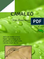 El camaleó Ricard Bonmatí lletra d'impremta
