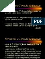 Percepção+e+Tomada+de+Decisão+-+slides