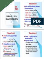 Formati Zapisa Brojeva