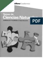 ANIMALES Y PLANTAS 3. REPRODUCCIÓN.pdf