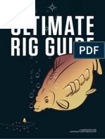 Ultimate Rig Guide by Vin Vin (Increible - Carpa)