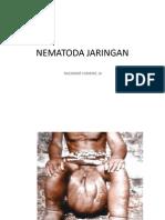Nematoda;Filariasis