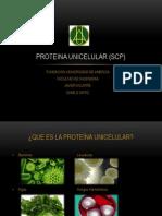 PROTEINA UNICELULAR (1)