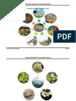 Ecologia Microbiana y Caracteristicas