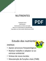2 Aula Nutrientes Sem Cor (1)