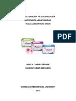 Informe Categorizacion y Estructuracion Mct