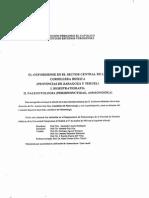 PALEONTOLOGIA PERISPHINCTIDAE - AMMONOIDEA