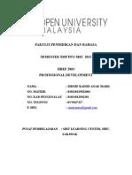 201307180755_professionalisme keguruan